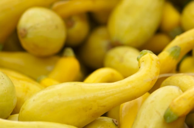 Yellow Squash Griddle Recipes
